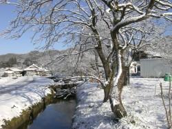 栃木鹿沼の雪景色